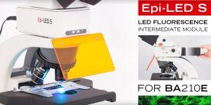 Epi Fluorescence Led Module
