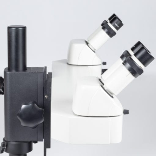 Dual View stereo microscope