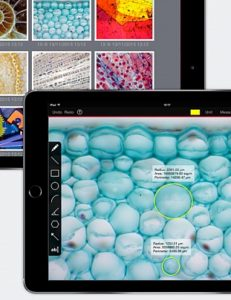 Moticonnect App for Moticam X3 Tablet Microscopy