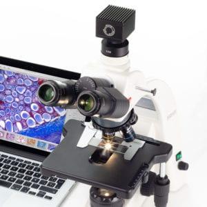 Microscope Camera with BA 310E Laboratory Microscope